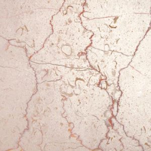 Shell Beige Marble